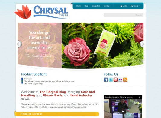 chrysalflowerfood-blog